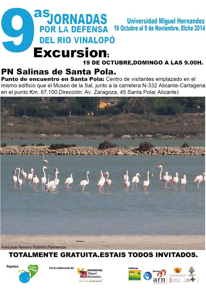 Excursion to the salt factories of Santa Pola 6